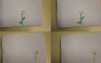 FlipBook – 3º A